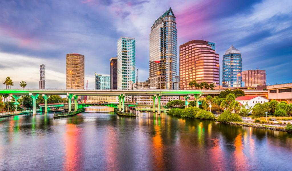 Tampa Bay IAVM VMS